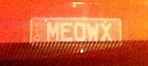 Meowx